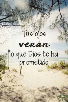 promesas de dios para la familia promesas de dios para sus hijos promesas de dios para mi vida promesas de dios para mi vida en la biblia promesas de dios biblicas