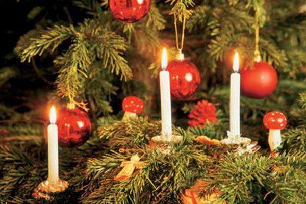 arbol de navidad precio